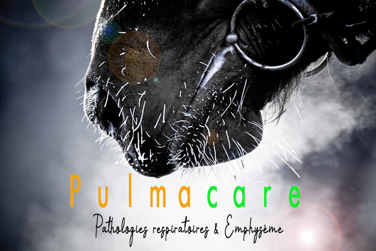 Pathologies Respiratoires