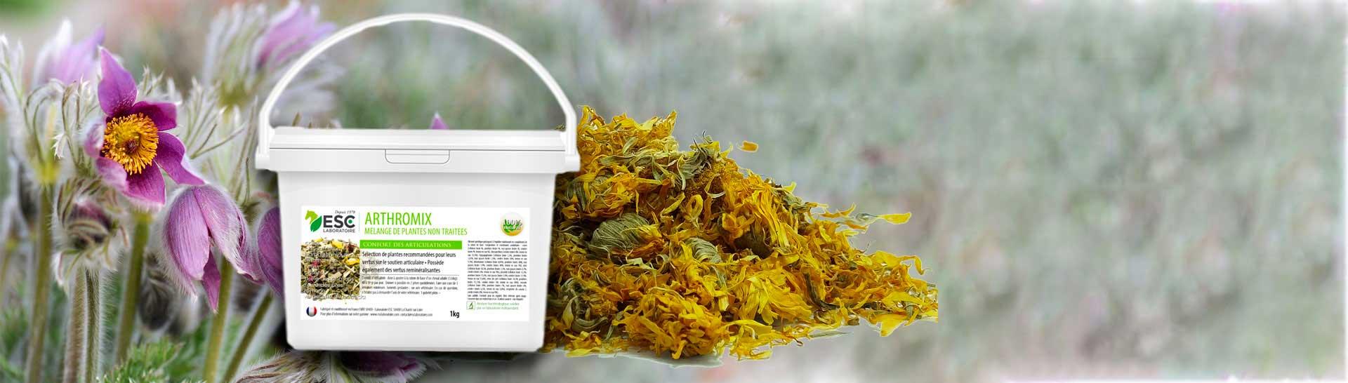 PHYTMI - 9 plantes et mélanges