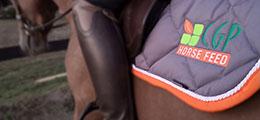Être ambassadeur de CGP Horse Feed